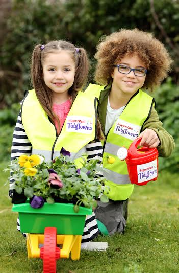 SuperValu Tidy Towns